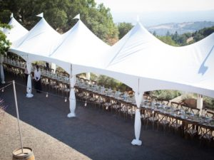 Festival and wedding tents